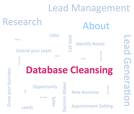 Database Cleansing